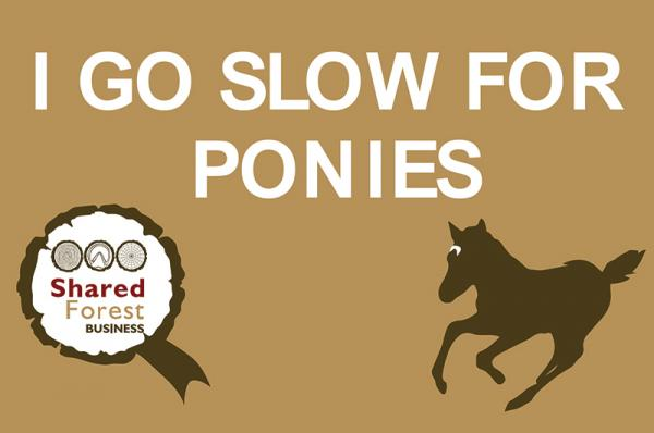 I Go Slow for Ponies